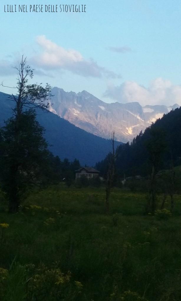 estate, ponte di legno, natura, montagna, vacanze