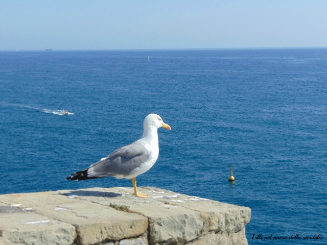 portovenere, travel,italia, liguria